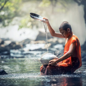 Monkey-mind to Monk: The Life Cycle of a Meditation Habit From the seeds of preaching to the fruits of practice-the 3 phases of meditation- 5 min read