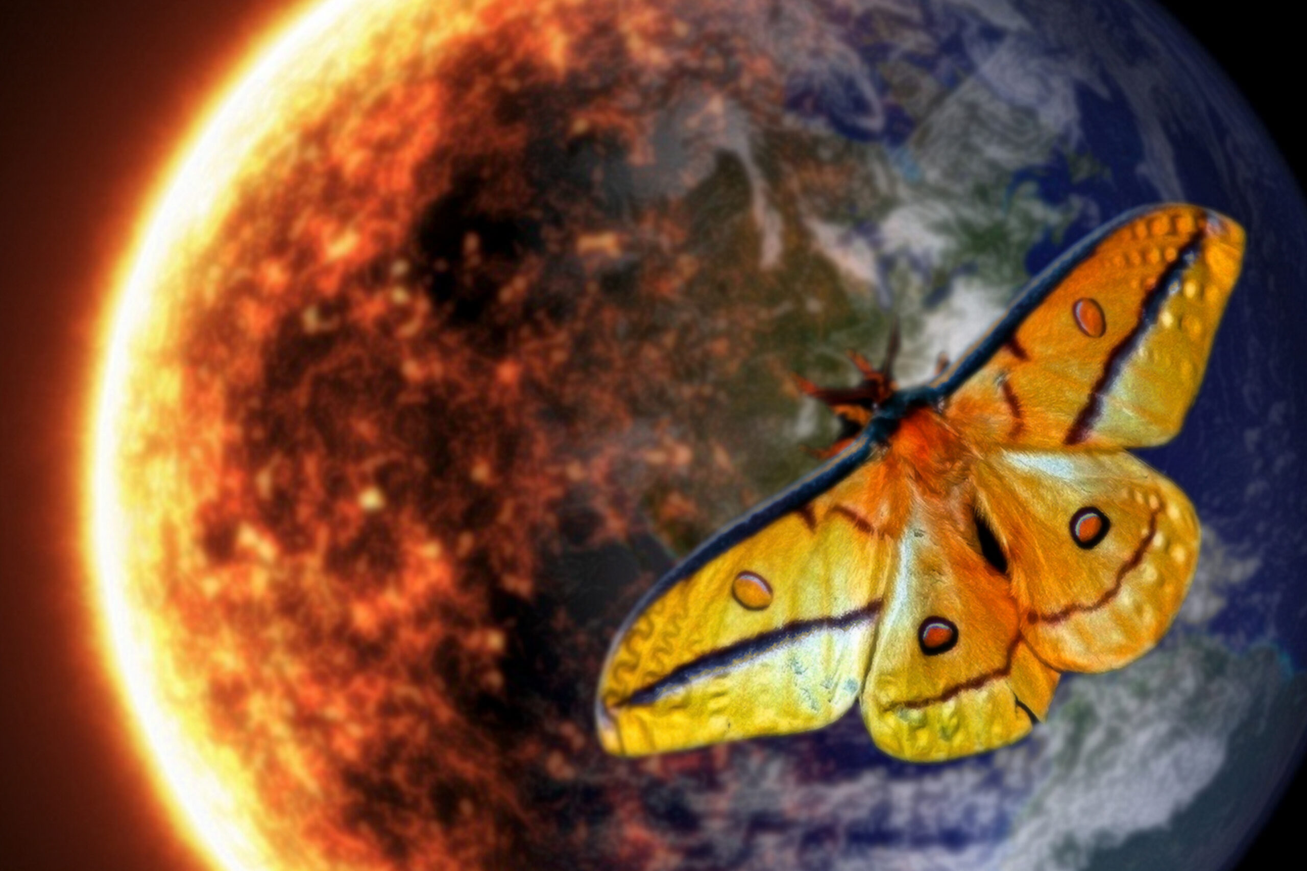 <h1>Moth vs Flame: Reason, Instinct and Humanity's Struggle toSurvive</h1> <h4>Why moths fly into flames and what it has to do with the end ofhumanity</h4>